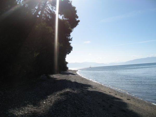 dafni island evoia 8