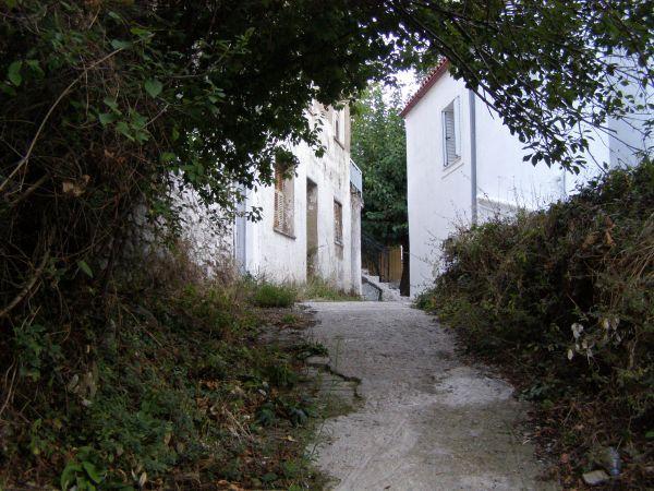 steni evias 4